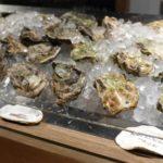 ヴィノーブルで食べた神の牡蠣「大黒神島の牡蠣」の話